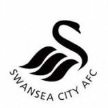 Preview The Swans vs The Blues | Prediksi Bola