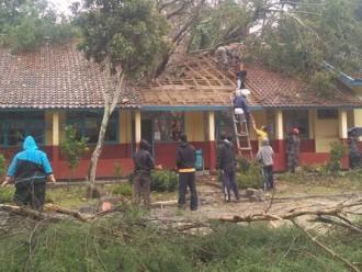 Siswa Sd Merdeka Berhamburan Keluar Akibat Pohon Beringin Rubuh